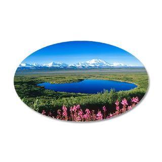 Denali National Park And Preserve Gifts & Merchandise  Denali