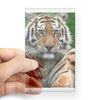 Exotic Feline Rescue Center 156 Tiger Decal for $4.25