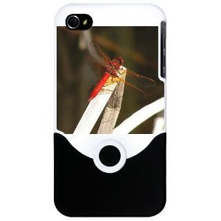 Red Dragonfly : Trackers Tracking and Nature Store