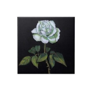 White Rose on Black Background: Color Pencil Ceramic Tile