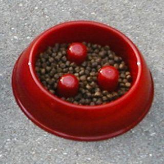 Brake Fast Dog Food Bowl Dish Slow Stop Eating Too Fast Break Fast Pet