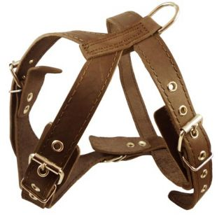 Leather Dog Pulling Harness Excercise Walk Boxer Amstaff 23 29 Size