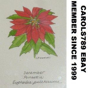 Linnea Wardwell Framed Print Poinsettia Flower Designs