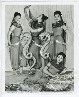 1951 Belly Dancer Showgirls Little Egypt Film Photograph Pin Up