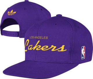 Los Angeles Lakers Purple Draft Anniversary Snapback Adjustable Hat