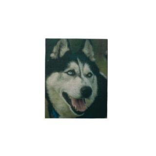Siberian Husky Dog Puzzle