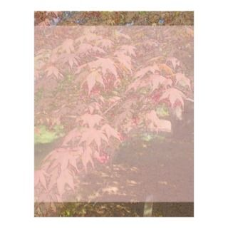Japanese Maple Colored Pencils Stationery Flyer