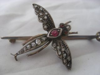 c1880 Victorian 9ct Gold Diamond Sapphire Ruby Dragonfly Brooch