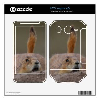 prairie dog alert skin for HTC inspire 4G