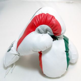 New Mexico Boxing Gloves 4 oz Mexican Flag Green Red