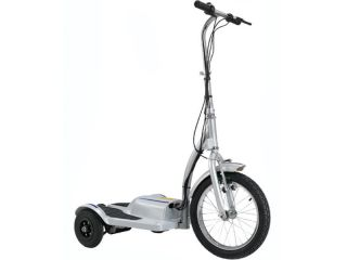 Wheel Electric Scooter TRX Personal Transporter 36V