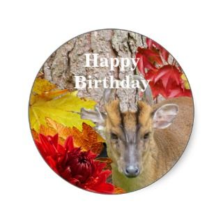 Happy Birthday Stickers Woodland Deer Country Fall