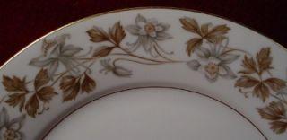 Noritake China Allison 5313 Pattern Dinner Plate