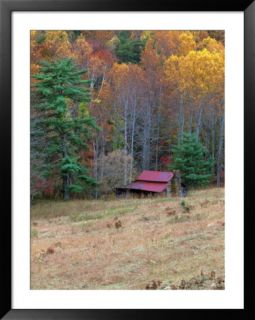 Cabin in Late Autumn in West Virginia Pre made Frame