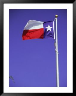Texas State Flag Pre made Frame