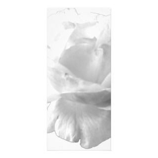 White Rose Design Personalized Rack Card