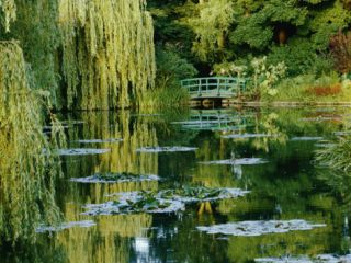 Subtle Light and Shade Reveal Impressionist Painter Claude Monets Self Designed Gardens at Giverny Photographic Print by Farrell Grehan