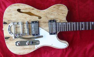 HK STL 190 E Gitarre mit F Loch und Bigs By
