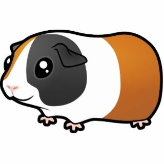Cartoon Guinea Pig Photo Sculptures, Cutouts and Cartoon Guinea Pig
