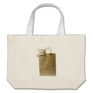 eddy bear in brown paper bag