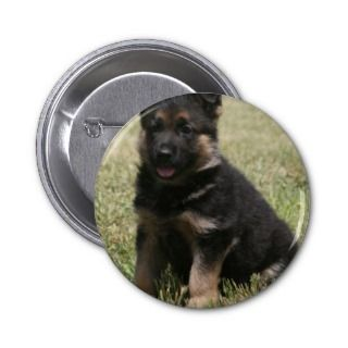German Shepherd Puppy Caitie Pinback Button
