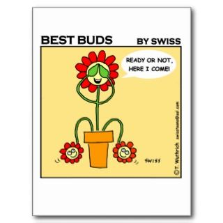 Funny Collectible Hide & Seek Gardening Cartoon Post Cards