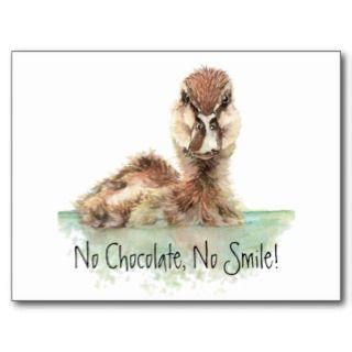 Funny, No Chocolae, No Smile, Angry Duck, Bird Poscards