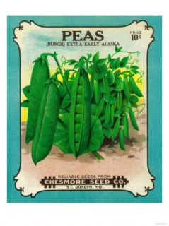 Peas Seed Packet Prints