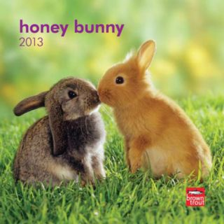 Honey Bunny   2013 Mini Calendar Calendars