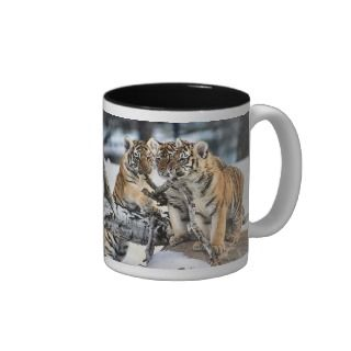 Three Tiger Cubs In Snow Art Gifts Mugs