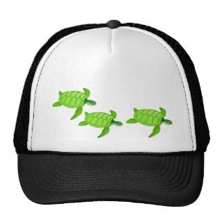 Green sea turtle hats