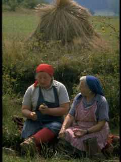 Czechoslovakian Peasants Working in the Field Premium Photographic Print by Bill Ray