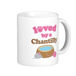 Chantilly Cat Breed Loved By A Gift Coffee Mugs