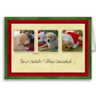Bone Natale & Fleas Navidad Greeting Card