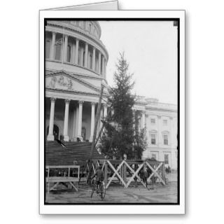 beautiful vintage christmas card of a washington dc christmas tree