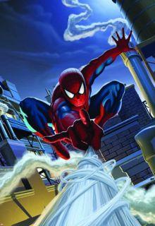 Fototapete Wandbild Kinderzimmer 1 424 Marvel Comic Spiderman Rooftop