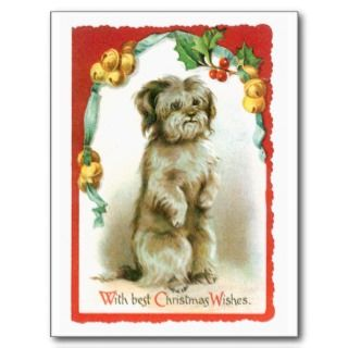 with best christmas wishes cute dog get in the christmas spirit