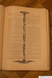 Heilige Schrift von Allioli + Dore zw. 1887   1889 Bibel altes + neues