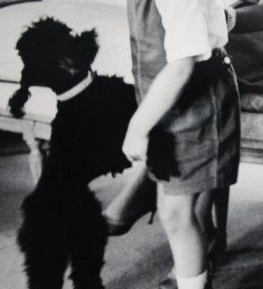 Luc Fournol  handsignierte FOTOGRAFIE von Grace Kelly , Albert