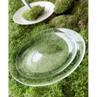 12 assiettes   Achat / Vente ASSIETTE   SERVICE GREEN TABLE OXYGEN 12