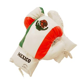Defender 20 ounce Mexican Boxing Gloves