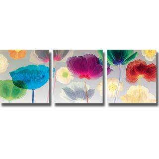 Robert Mertens Poppy Panorama 3 piece Canvas Art Set