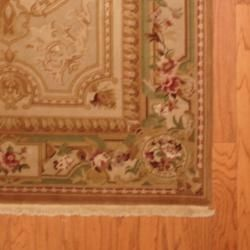 Asian Hand knotted Aubusson Beige/ Gold Wool Rug (4 x 6)