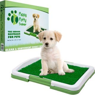 PAW Green/White Plastic Odor resistant Three layer Puppy Potty Trainer