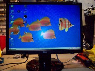 L196WTQ 19 Inch Flat Panel LCD Monitor Computers