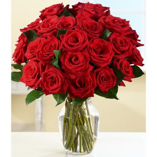 Mothers Day Preorder) Two Dozen Red Roses with Large Vase