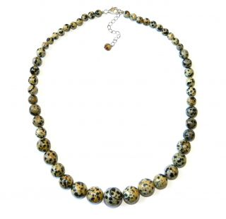 Pearlz Ocean Sterling Silver Dalmatian Jasper Journey Necklace