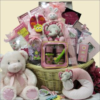 Great Arrivals Grand Welcome Baby Girl Gift Basket Today: $447.99