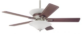 Hunter Piedmont 54 inch fan