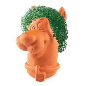 Joseph Enterprises CP 050 16 Scooby Doo Chia Pet  Case of